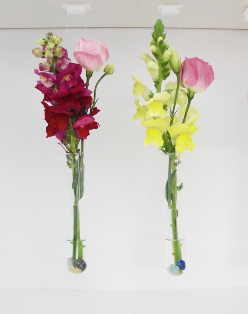 tube-flowers-3-WEB
